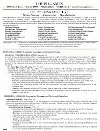 Director Of Operations Resume Sample Recentresumes Com