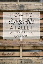 pallet ideas for walls. how to disassemble a pallet without killing yourself! so helpful! ideas for walls