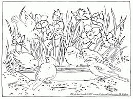 Pond Scene Coloring Page See More