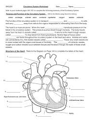 Pictures: Circulatory And Respiratory System Worksheet, - HUMAN ...