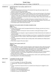 Assistant Project Manager Resume Job Description Project Manager Assistant Resume Samples Velvet Jobs