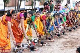 all you need to know about pongal the harvest festival ibps sbi thai pongal festival interesting facts kolam