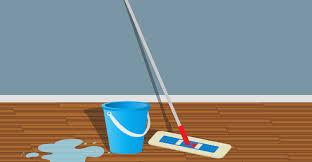 10 best mops for hardwood floor reviews 2019