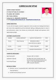 Resume Format For It Professional Reference Fresh New Resume Sample