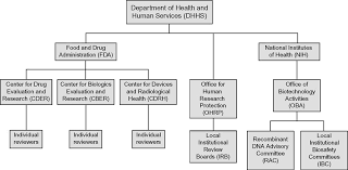 Dhhs Organisational Chart Reporting Adverse Events In Gene Therapy Studies Springerlink