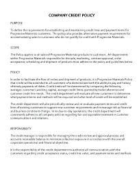 Credit Policy Template Monister