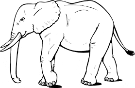 Small Picture African Elephant from the side coloring page Animals Town