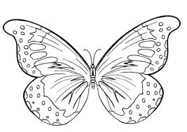 Enjoy these free, printable butterfly coloring pages! Free Printable Butterfly Coloring Pages For Kids Coloring Pages