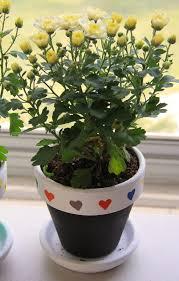flower pot painting idea