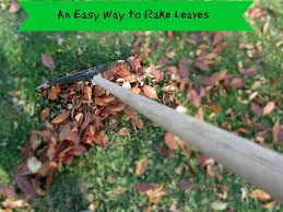 Kitchen And Garden Vickies Kitchen And Garden In The Garden An Easy Way To Rake Leaves