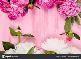 Birthday Flowers Background Design Beautiful Pink Peony Flowers Pink Background Copy Space Top