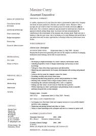 Advertising Account Executive Resume Extraordinary Uwaterloo Uwaterlooco