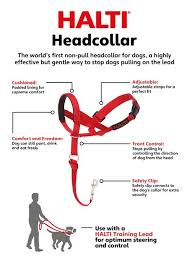 Halti Headcollar Red Size 3 Check Out This Great Product