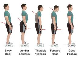 Intro To The Best Back Support Braces For Work \u0026 General Use 10 Belts Men Women With