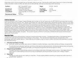 Mft Intern Resume Resume Ideas