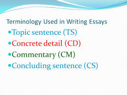 what is the american dream how is it illustrated in media  terminology used in writing essays topic sentence ts concrete detail cd commentary