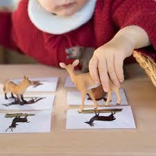 Cool resume templates free with elegant cv. Montessori Diy Tiere Zuordnen Chez Mama Poule