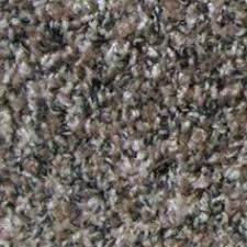 Spellbound Color 1 Residential Textured Frieze Carpet Jennifer
