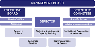Home Office Organisation Chart Fra Structure European Union Agency For Fundamental Rights