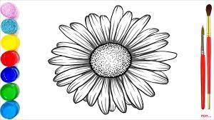 28+ Tranh tô màu hoa đồng tiền đẹp nhất cho bé tập tô