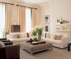 Small Picture Interior Home Decoration 20 Homey Design Gorgeous Modern House