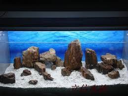 diy aquarium background paper projects