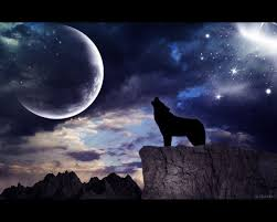 black wolf howling wallpaper. Simple Wolf Moon Wolf Wallpapers Group 70 To Black Howling Wallpaper A