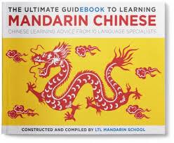 learn kung fu pdf