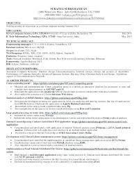 Java Developer Resume Objective Rome Fontanacountryinn Com