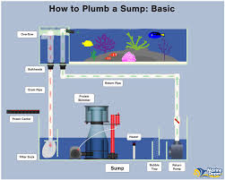 Freshwater Sump Design How To Plumb A Sump Basic Intermediate And Advanced