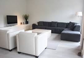 my houzz modern meets traditional in the netherlands contemporary living room amazing living room houzz