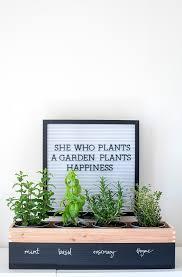 alice and loisdiy herb garden planter