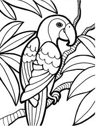 Rainforest Animal Colouring Sheets Tropical Coloring Pages