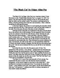 the black cat by edgar allan poe essay the black cat critical essays enotes com