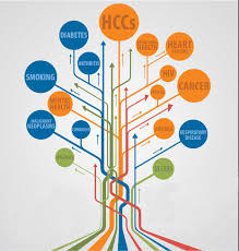 Hccs Point To Risk Adjustment Compliance Aapc Knowledge Center