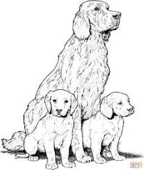 Small Picture Beagle with Puppies favorite Dog Colouring pages Pinterest