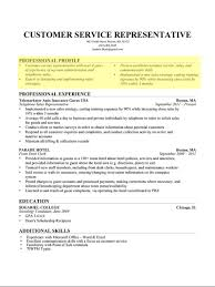 Customer Service Experience Examples For Resume How To Write a Professional Profile Resume Genius 50