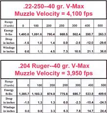 22 Cal Trajectory Chart 19 Unmistakable 22 250 Drop Chart
