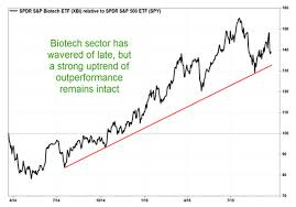 Xbi Chart Dont Dump Biotechnology Stocks Yet Says Chart Guru Thomas