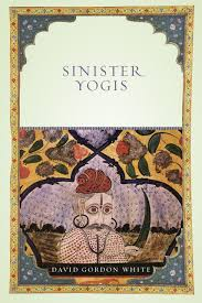 protestant catholic jew an essay in american religious sinister yogis