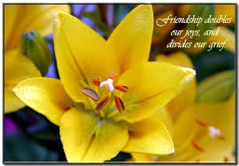 Beautiful Flowers Images With Friendship Quotes Best of Friendship Doubles Our Joys Flowers Quote Quotespictures
