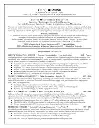 Gallery Of Executive Summary Resume Example