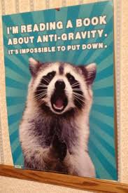 Raccoons In Vending Machine Magnificent The Raccoons Expression Just Funny Stuff Pinterest Science Humor