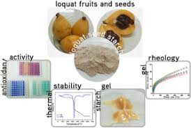 Eriobotrya japonica seed as a new source of starch: Assessment of phenolic  compounds, antioxidant activity, thermal, rheological and morphological  properties - ScienceDirect