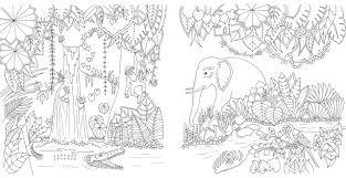 ふしぎな王国 花と動物のぬりえブック ジョハンナバスフォード 西本