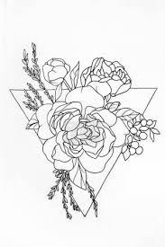 Fotka Náčrt Aktivní Zóny Růže V Trojúhelníku Na Bílém Pozadí