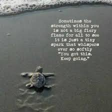 Turtle Quotes Real strength does not always draw attention to itself but instead 5