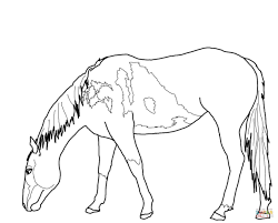 Printable Wild Horse Coloring Pages 2 Funny Coloring Free Coloring