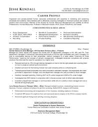 Resume Template Human Resources Executive Examples Training And