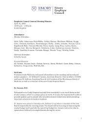 1 Employee Council General Meeting Minutes April 16, 2008 12:00 p.m. – 2:00  p.m. Grad